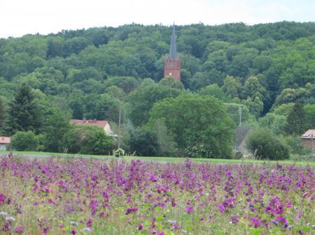 Stüler-Kirche Reitwein Foto: Info Punkt Lebus