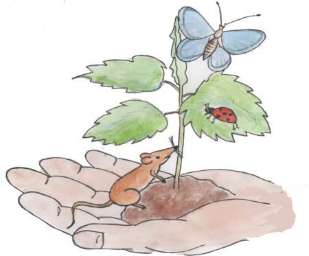 """""""Wie ein Baum: Zeit haben zum Wachsen. Gute Frucht bringen, der Natur verbunden sein, fest in der Erde stehen, sich zum Himmel strecken."""""""
