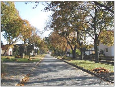 Dorfstraße Born