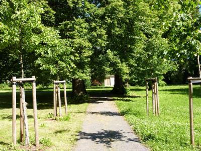 Schlosspark ( Foto Elektro-Seidler)