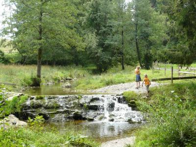 Bachlauf im Krautgarten