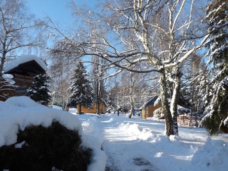 Bungalows im Winterwald