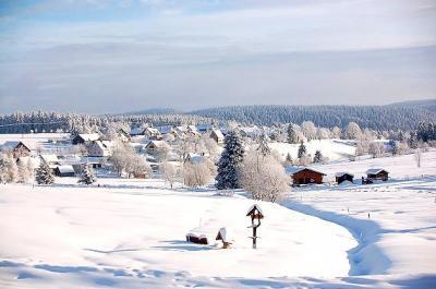 Das Skigebiet - Dürre Fichte -