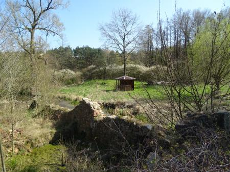 Mühlenruine, im Mühlenweg  Foto: Info Punkt Lebus