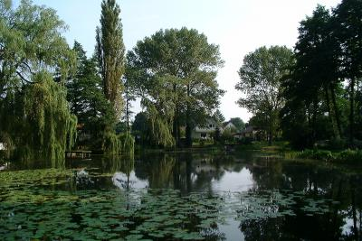 Vogelsdorfer See