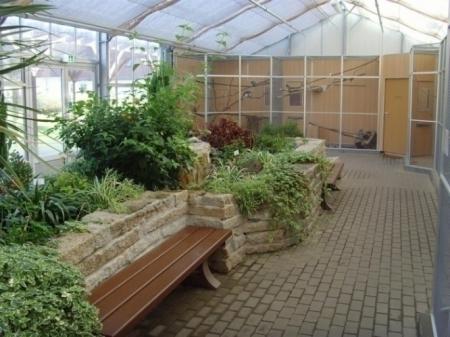 Viel Grün und zahlreiche Vogelarten kann man im Vogelhaus erleben