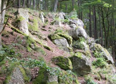 Wichtelsteine (Foto: Herbert Wolf)