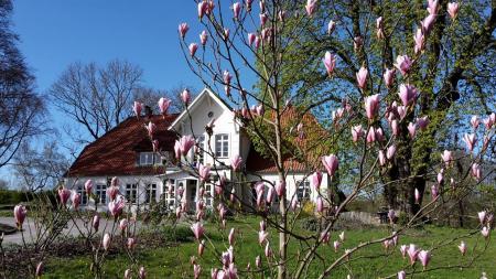 Gutshaus Schependorf