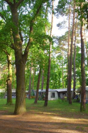 Campingplatz Möllensee Nord l