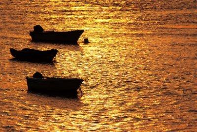 Bild: sokaeiko / pixelio.de