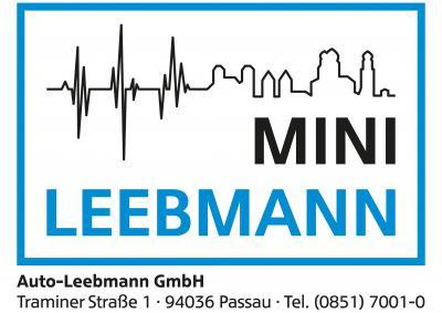 Fürstenstein Läuft Mini Leebmann