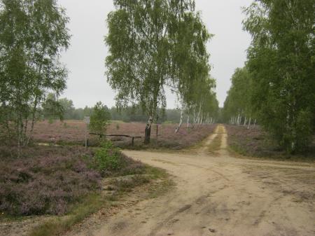 Naturschutzgebiet Forsthaus Prösa