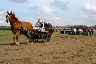 Kutschfahrer in historischer Tracht beim Pfingst- und Reiterfest