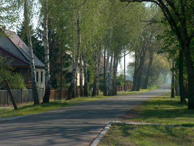 Weidenallee nach Manschnow