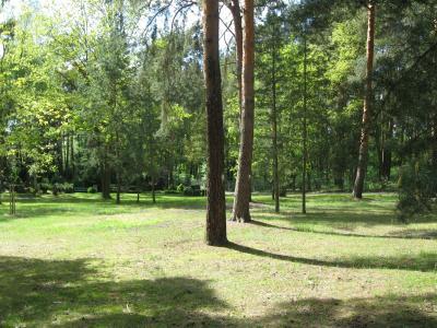 Foto zur Meldung: Erste naturnahe Bestattung auf dem Friedhof Kremmener Straße