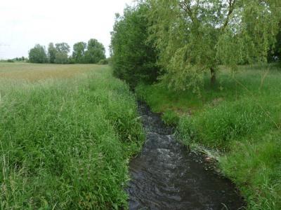 Bild der Meldung: 1. Informationsforum zum Gewässerentwicklungskonzept am 07.09.2010