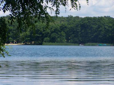 Foto zu Meldung: Groß Glienicker See: Uferweg wird umgestaltet