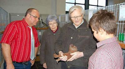 Foto zu Meldung: Knappe Entscheidungen bei den Calauer Züchtern