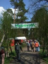 Foto zur Meldung: Willkommen im Maienwald!