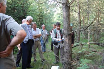 Foto zu Meldung: Calauer Stadtwald in vorbildlichem Pflegezustand