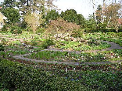 """Foto zu Meldung: """"Steingarten der sieben Jahreszeiten"""": Ein alter Garten in neuem Gewand"""