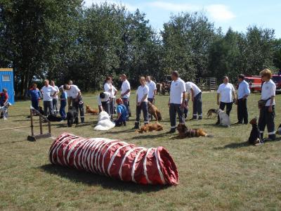 Foto zur Meldung: Zeltlager der DRK-Rettungshundestaffel in Heinersdorf