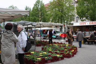 Foto zur Meldung: Blumen- und Pflanzenmarkt