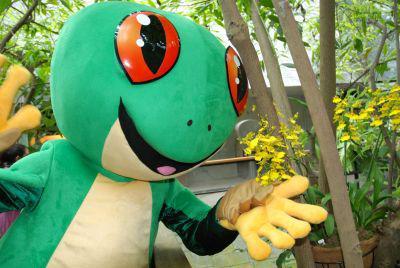 """Foto zur Meldung: """"Josch der Frosch"""": Name für Maskottchen der Biosphäre vorgestellt"""