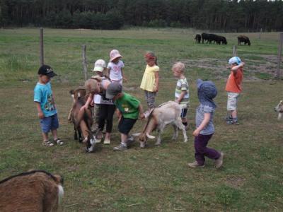 Kindertag im Wildpark
