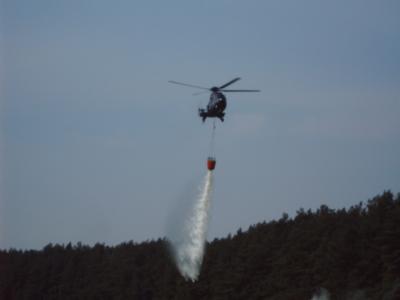 Foto zur Meldung: Feuerwehrübung Waldbrandbekämpfung