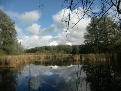 Foto zu Meldung: Traditionelle Herbstwanderung rund um den Herrensee