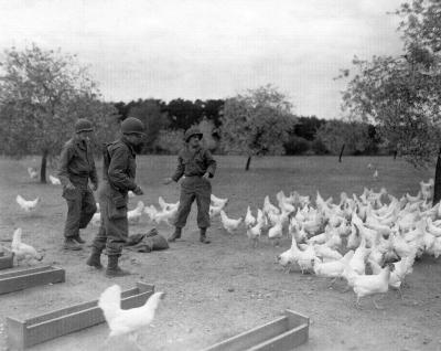 Vorschaubild zur Meldung: Neue Fotos der US-Armee vom April 1945 aufgetaucht