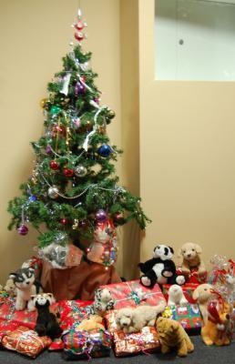 Foto zur Meldung: Strahlende Kinderaugen beim Anblick des leuchtenden Weihnachtsbaumes und der vielen Päckchen bei der Weihnachtsfeier der Tafel – Stadtverwaltung spendete Obst und Plüschtiere
