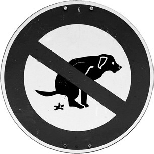 Foto zu Meldung: Verschmutzungen durch Hundekot