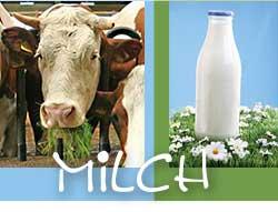 Foto zur Meldung: Milchreise 2012
