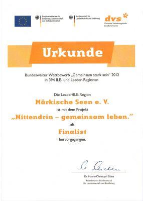 Vorschaubild zur Meldung: Nachtrag: Wettbewerb Gemeinsam stark sein 2012 - LAG unter Finalisten