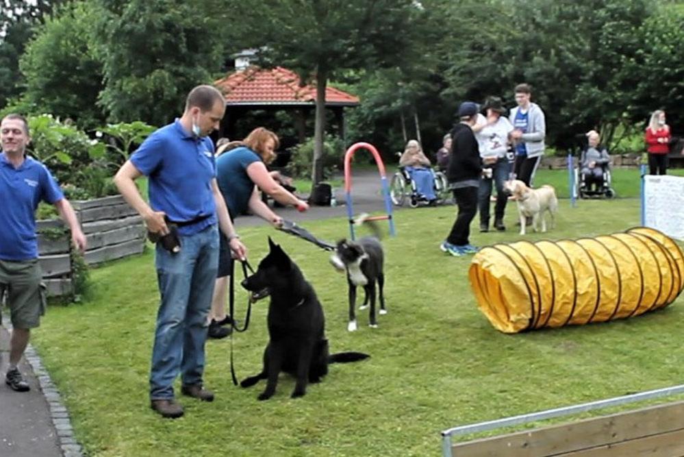 musikshow-mit-hunden-hundesportverein-geraberg_06
