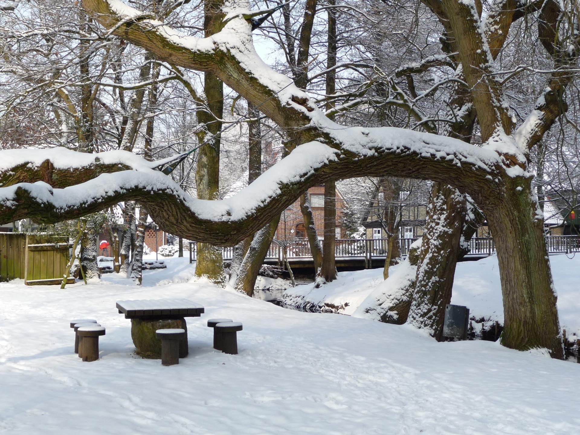 Winter auf der Bleiche