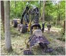 Foto zur Meldung: ELER-Projekt des Monats Juni 2013 - Fitnesskur für den Müncheberger Stadtwald