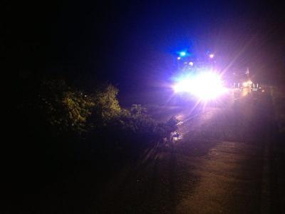 Foto zu Meldung: Baum von der Straße geräumt