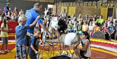 Foto zur Meldung: SVZ Hier üben Kinder für den Zirkus