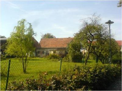 Foto zur Meldung: Ein Dorfladen für Trebnitz