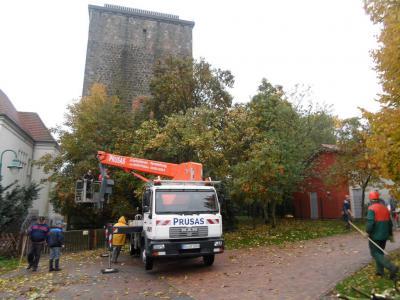 Baumschnitt vor dem Klutturm
