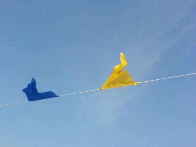 Foto zur Meldung: Partnerschaften zwischen NGO und Unternehmen gewinnen an Wichtigkeit