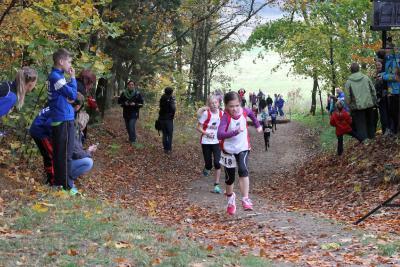 Foto zur Meldung: Landesmeisterschaften im Crosslauf im Laager Stadtwald