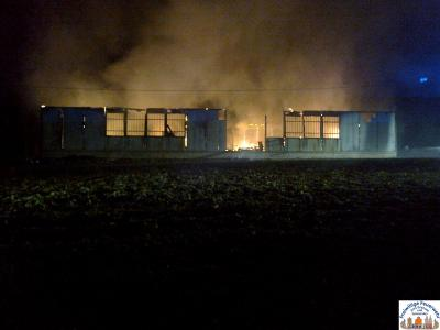 Foto zur Meldung: Überörtliche Hilfe bei Scheunenbrand in Grundmühle (Löwenberger Land)