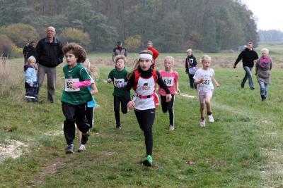 Foto zur Meldung: Laufsport in Laage im kommenden Jahr