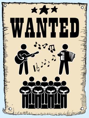 Foto zur Meldung: Gitarrenspieler, Akkordeonspieler und Sänger gesucht