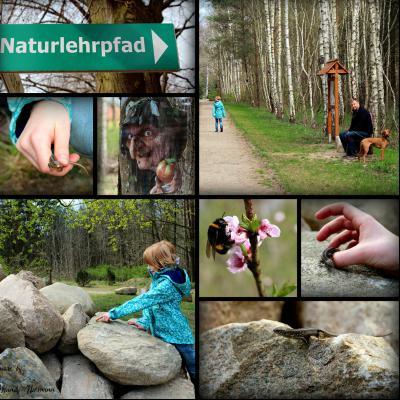 Foto zu Meldung: Naturlehrpfad wird weiterentwickelt