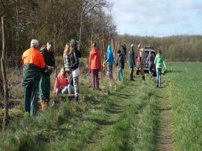 Foto zu Meldung: Bäume pflanzen - Projekttag Klasse 6a und 6b